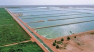 Bauer Group commissioned to expand the World's biggest constructed Wetland Treatment Plant in Oman